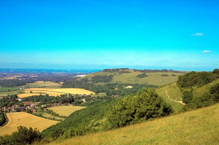 South Downs, West Sussex (3)