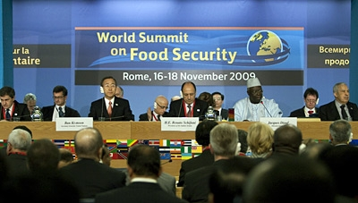 FAO hunger summit
