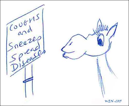Coughs  Sneezes Spread Diseases2