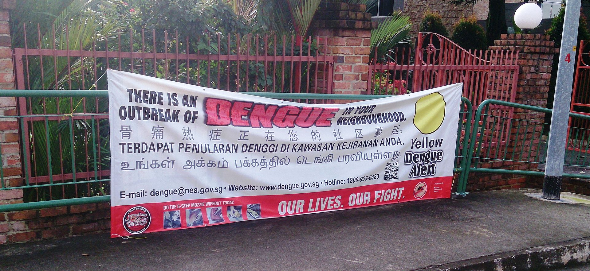 Dengue_banner