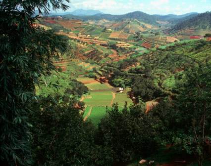 130114-multifunctional-agriculture-landscape-cabi