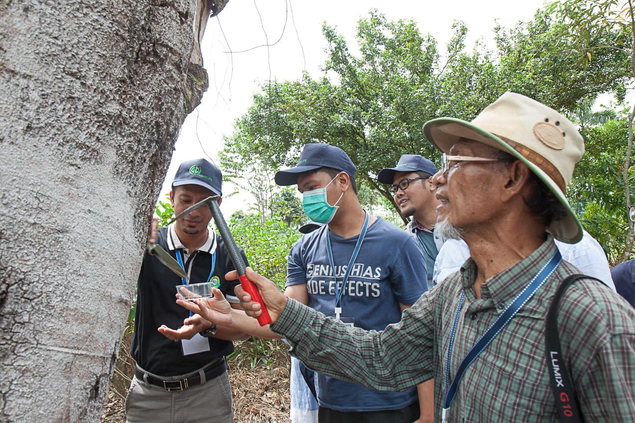 Termites workshop 4
