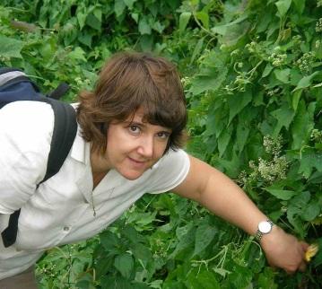Carol Ellison observing Mikania micrantha infestation in India_3852019008_o