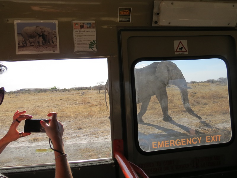 Namibia-gameview