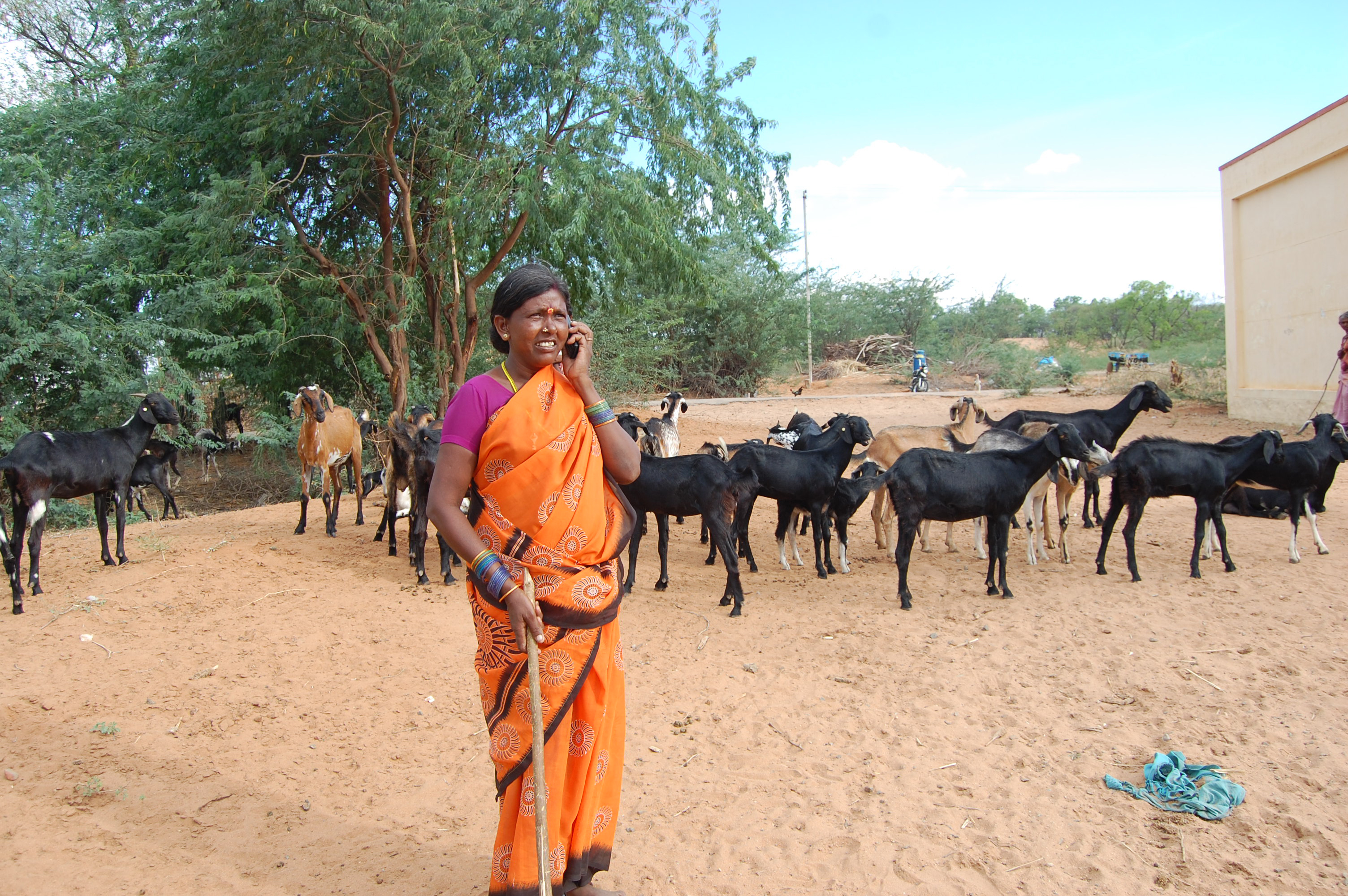 Theni Jakhammal using her mobile phone_6459818213_o