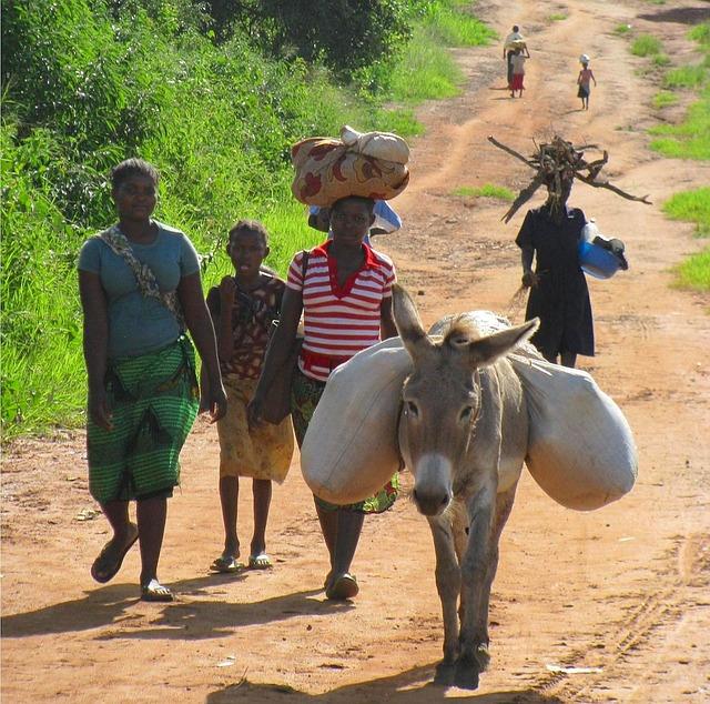Pixabay-mozambique-80752_640