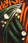 Cucumberscottbsauerusda