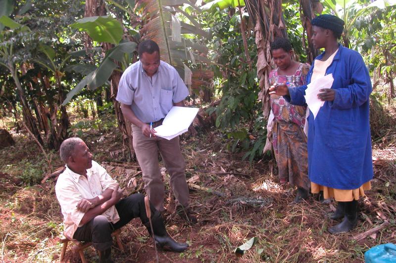 On farm pics - Uganda Tanzania and Ethiopia 119
