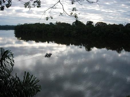Tambopata2