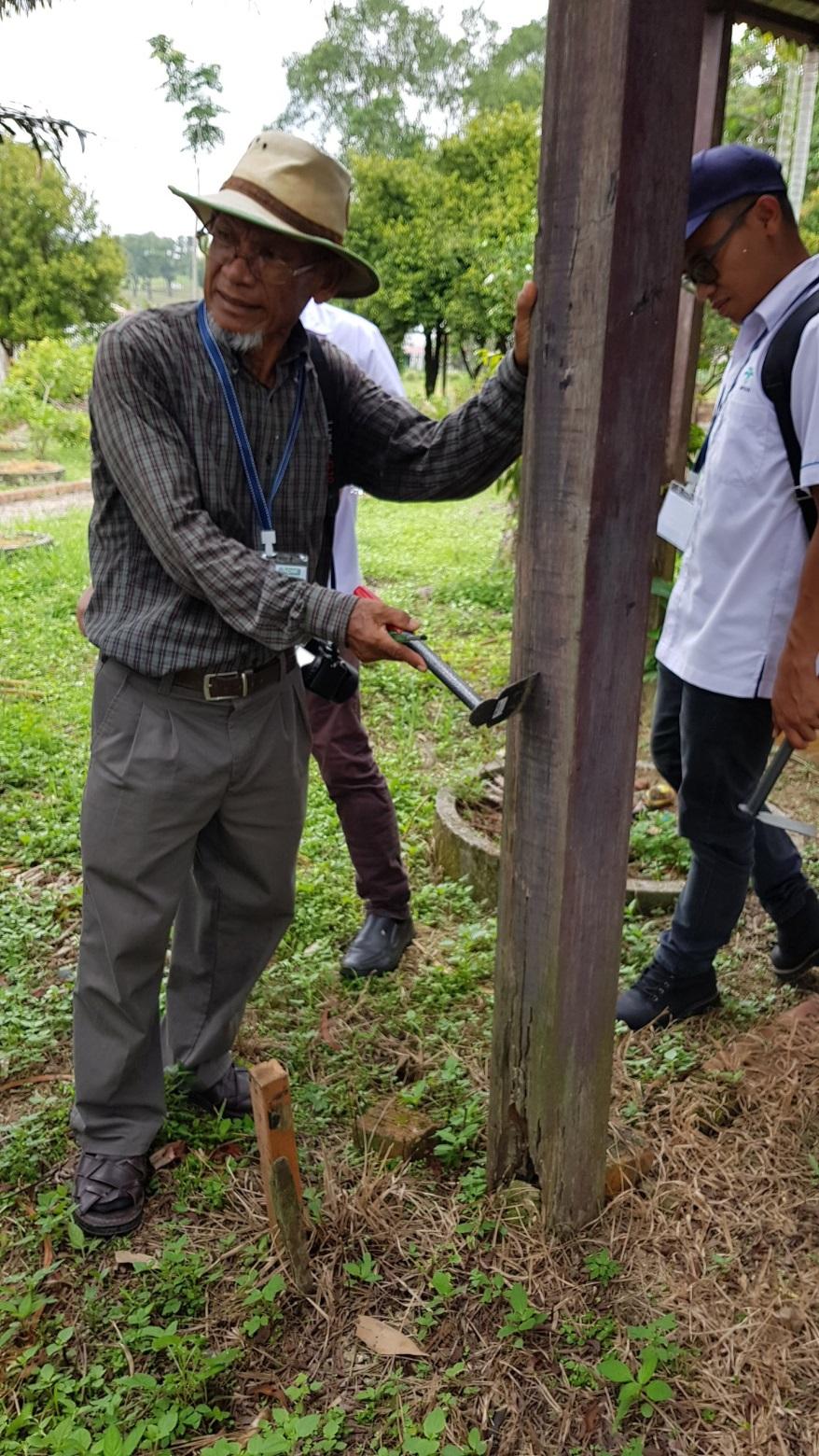 Termites workshop 5