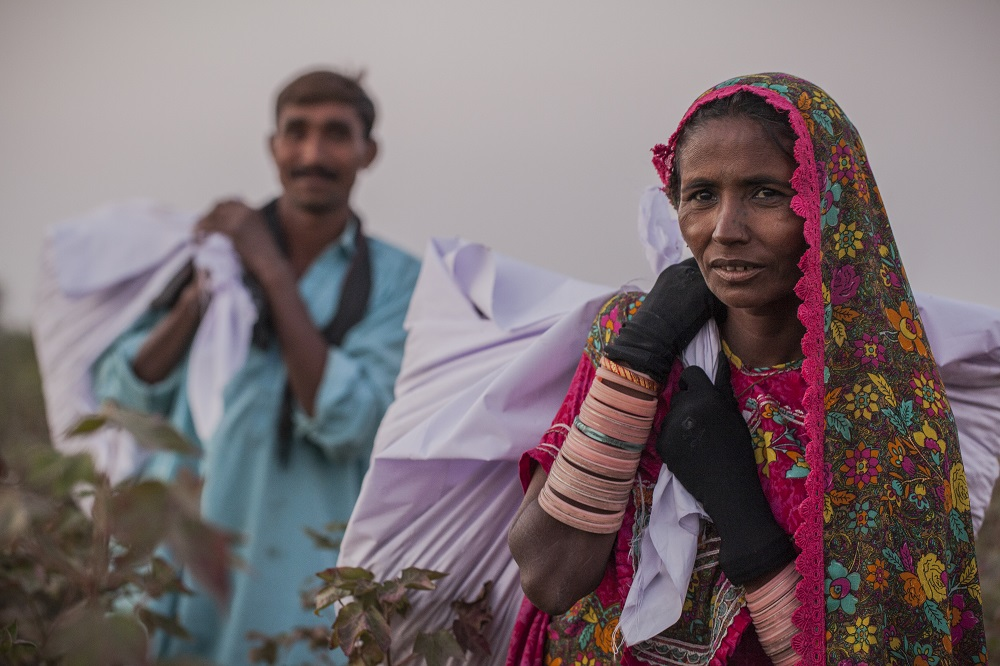 Sorjo left and Amarti right carry raw cotton bags after picking at the Farm Naimatullah Laghari, Sinjhoro, Sanghar, Sindh, Pakistan.