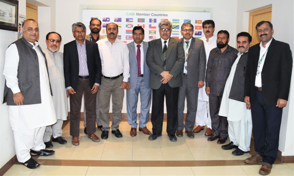 CABI launches CAPAS project in Pakistan