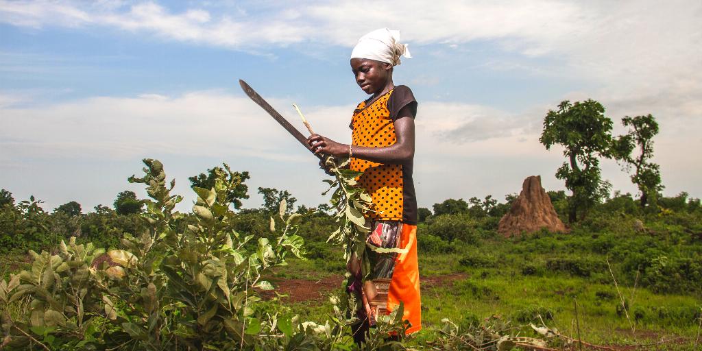 A farmer in Africa